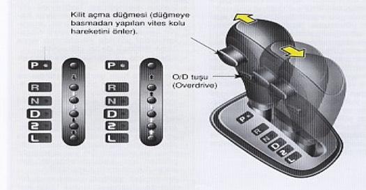 Otomatik Vites özel Direksiyon Dersi